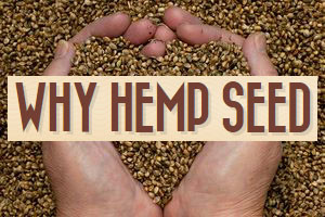 whuy-hemp-seed-is-good-for-you